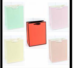 Пакет подарочный Однотонный в рамке (микс) 18*23*10 см