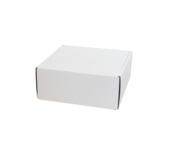 Коробка 250*250*100 мм, белая, ДП68
