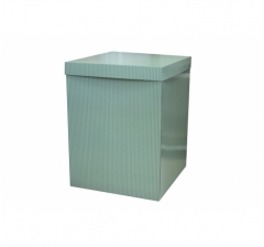 Коробка 55*57*72 см, зеленые полоски. Не отправляем почтой.