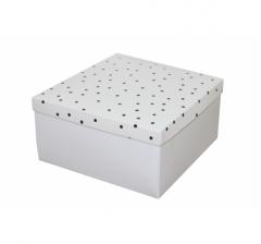 Коробка подарочная 200*200*100 мм, дизайн 2020-9, белое дно