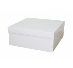 Коробка подарочная 240*240*100 мм, белая
